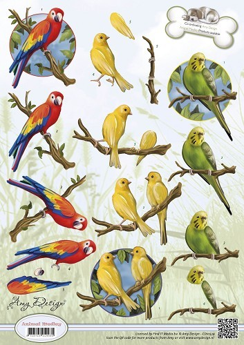 3D Amy Design - Animal Medley - Tropical Parrots